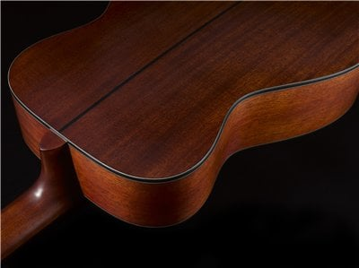 Yamaha Red Label FG solid back and sides