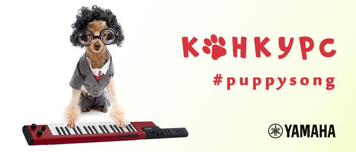 Конкурс Puppysong 2019 - JAM.UA