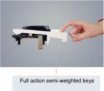 CME Z-key