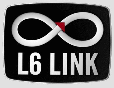 L6 Link