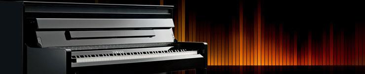 Цифровое пианино Yamaha Clavinova CLP-645 купить