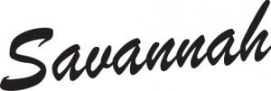 Savannah акустические гитары, купить в Украине