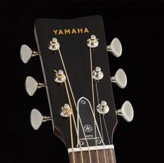 Yamaha FG180-50TH JAM.UA