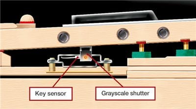 Key Sensors - JAM.UA